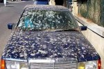 car-covered-with-bird-crap