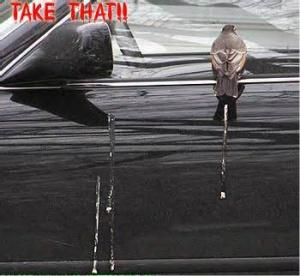 bird poo good bad luck