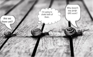 funny snails